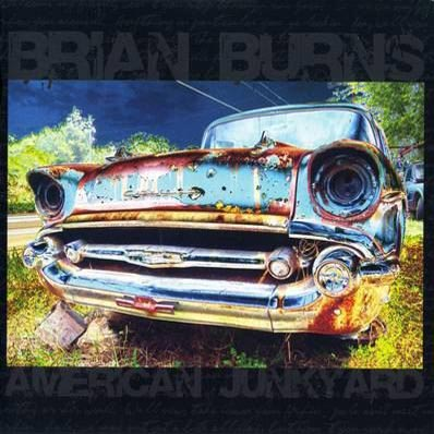 Brian Burns American Junkyard album cover